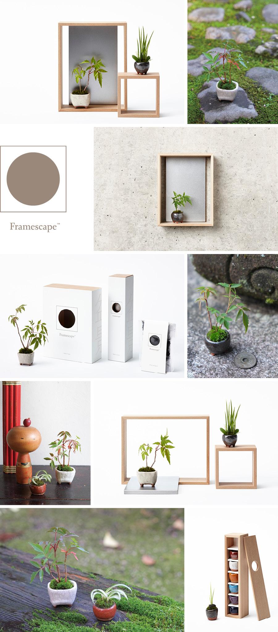 silent_framescape_01